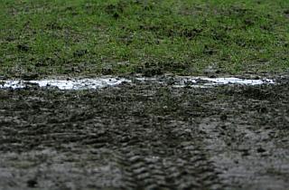 Morten Olsen utilfreds med banen i Parken